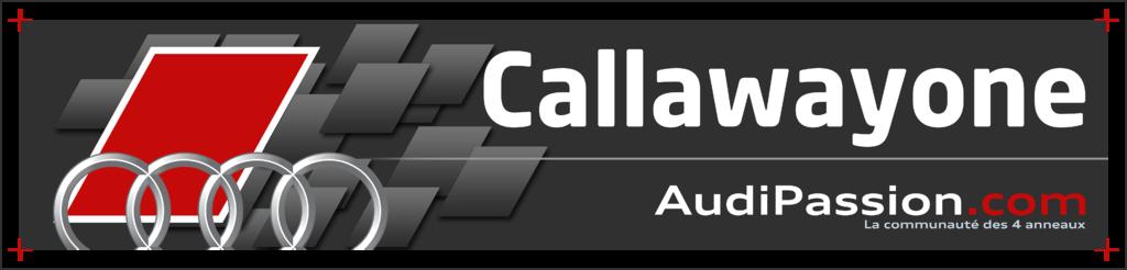 Plaque_FR_AP_(exemple)_Callawayone_V1.3.